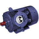 Explosion Proof Motors For Mining Industry