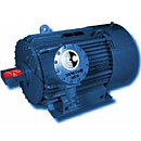 Compact Explosion Proof High Voltage AC Motors