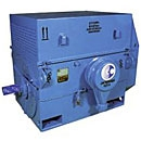 Three-Phase High Voltage AC Motors