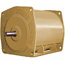 Explosion Proof High Voltage AC Motors