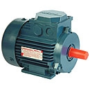 Multi Speed AC Motors